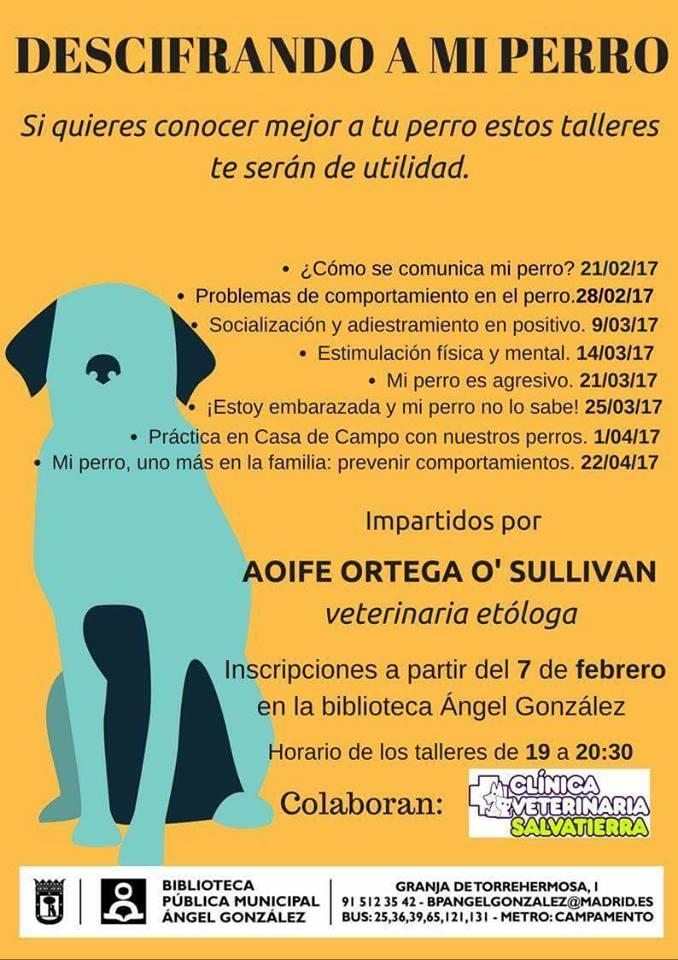 Ampa csb madrid descifrando a mi perro for Autoescuela colonia jardin