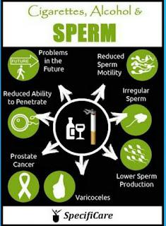 Rokok dan infertilitas