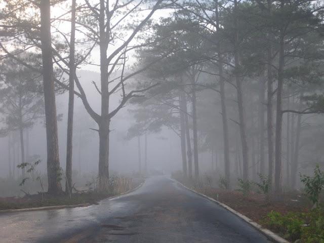 Hình ảnh cơn mưa Đà Lạt
