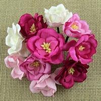 http://www.artimeno.pl/-magnolias/7459-wild-orchid-crafts-magnolias-magnolie-rozowe-mix-5szt.html