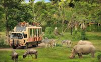 Liburan Ke Bali Yuk! Ini Dia 10 Tempat Wisata Terbaik Di Bali