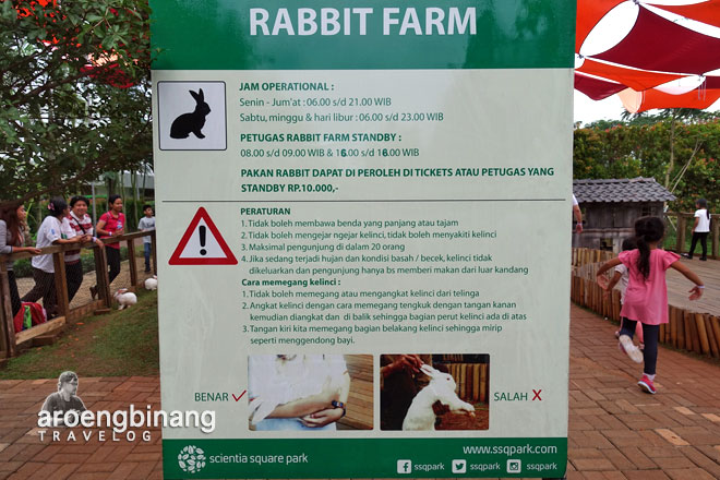 rabbit farm scientia square park tangerang