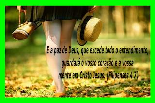 http://www.facebook.com/autoraanaferreiralima