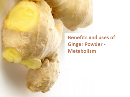 Benefits and uses of Ginger Powder - Metabolism