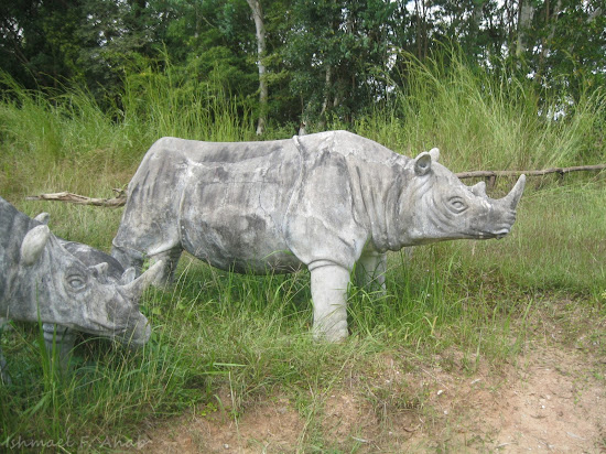 Statue of rhinoceros at Phukhieo Wildlife Sanctuary