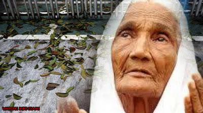 Kisah Yang Sangat Terharu Tentang Seorang Nenek Pemungut Daun di Mesjid