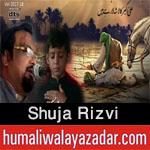 http://www.humaliwalayazadar.com/2015/09/shuja-rizvi-nohay-2009-to-2016.html