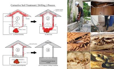 Định mức - Đơn giá phòng chống mối và xử lý côn trùng gây hại năm 2013