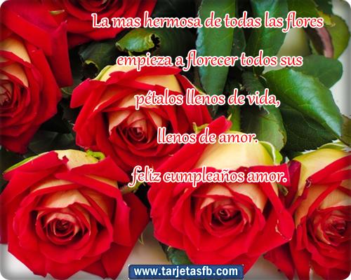 Felicitaciones De Cumpleaños Con Flores: Imagenes Rosas Para Cumpleaños