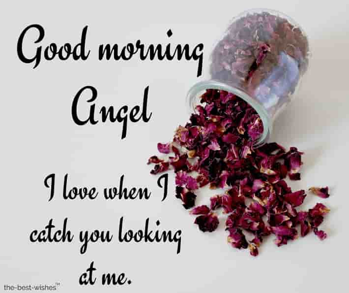 photo of good morning angel