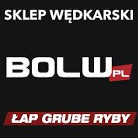 https://www.bolw.pl/
