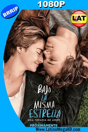 Bajo La Misma Estrella (2014) Latino HD 1080P ()