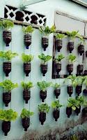 como se hace un jardin vertical con botellas de plastico