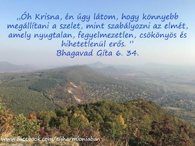 idézet, jóga, bg, bhagavad gíta, gíta, gita, jóga, spiritualitás , eme,