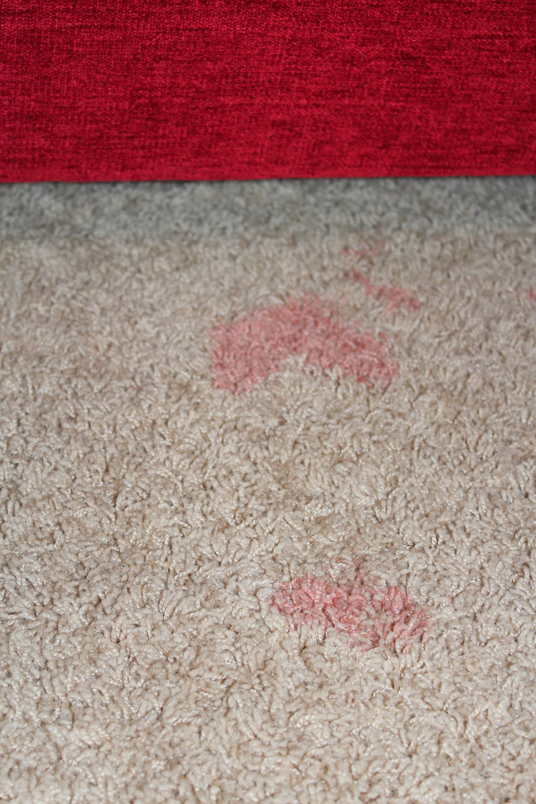 Harris Sisters Girltalk How To Remove Tough Carpet Stains