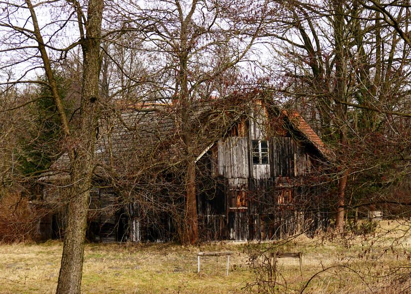 Stawy Milickie, wieś Niezgoda