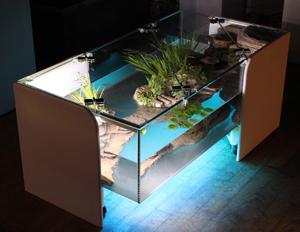 Desain Meja Aquarium