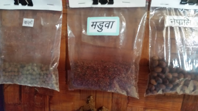 Some Grains and Cereals of Kumaon displayed at the Tribal Museum