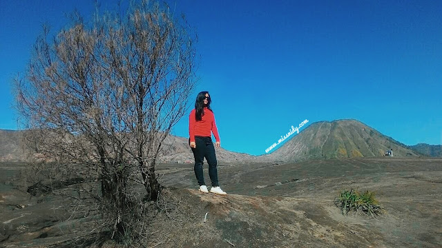 foto-foto di gunung bromo
