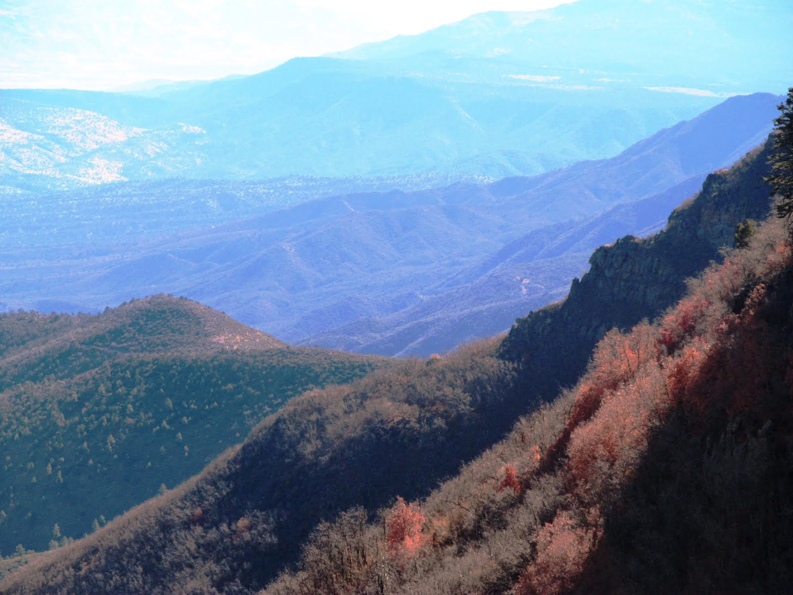 Lazarow World-Hike-About: 10.31 Mingus Mountain, Prescott ...