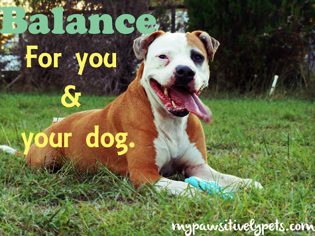 Balance for you and your dog