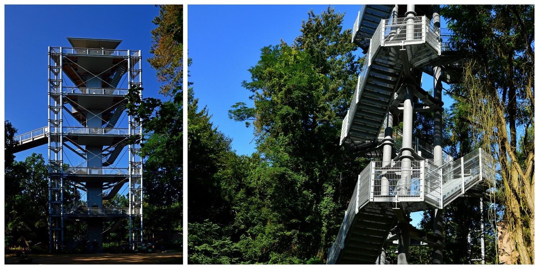 Ścieżka w koronach drzew - Baumkronenpfad