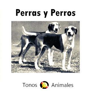 Tono de Ladridos. En la imagen, una fotografía en blanco y negro con un perro y una perra
