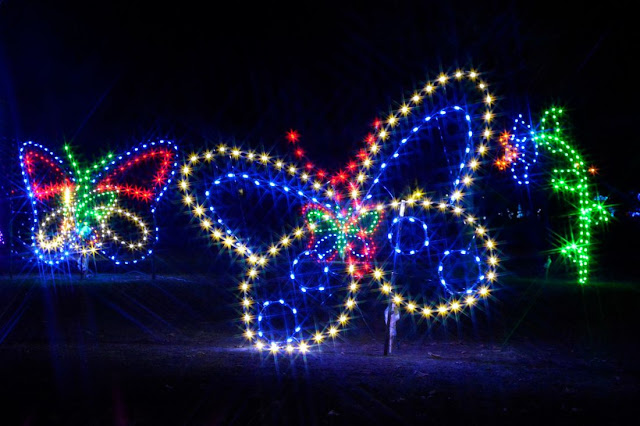Best Places to See Christmas Lights in Metro Detroit