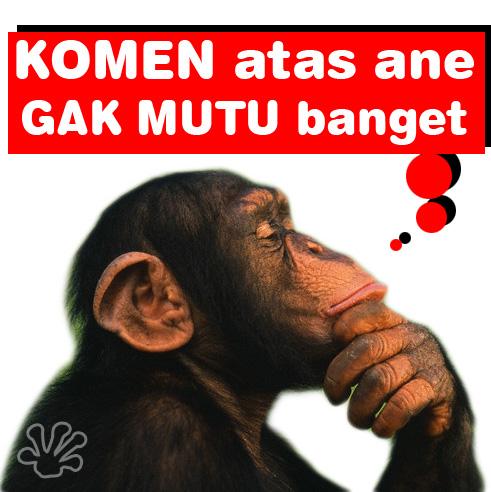 Gambar2 Lucu buat Komentar Facebook Paling Gokil - Kochie Frog