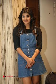 Actress Hebah Patel Stills at Nanna Nenu Naa Boyfriends Movie Interview  0027.JPG