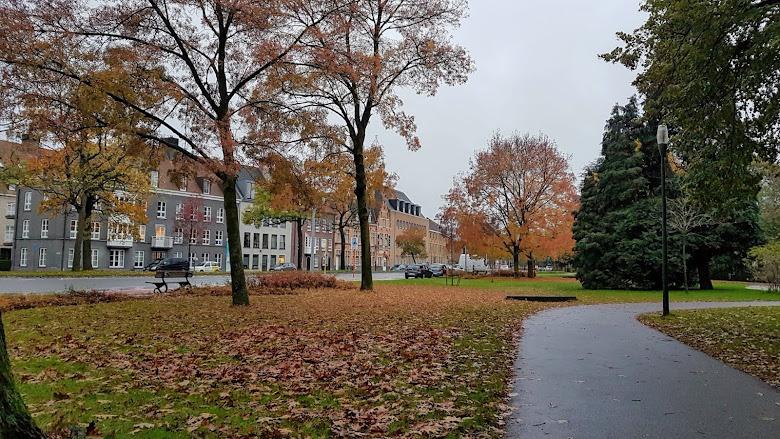 公園內的秋景