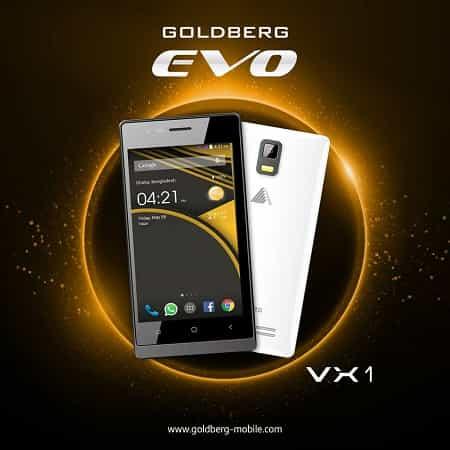 Goldberg EVO VX1 Smartphone