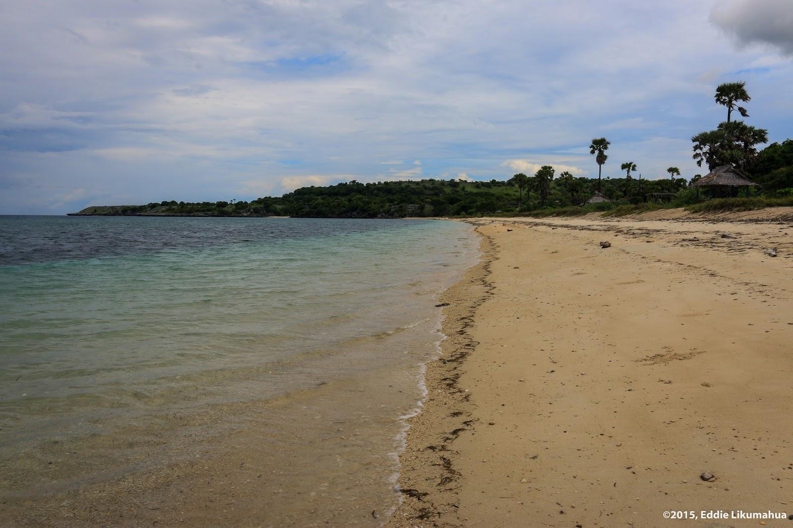 Maluku Manise Pulau Kisar Vi Pantai Uhum Purpura Kisar Utara