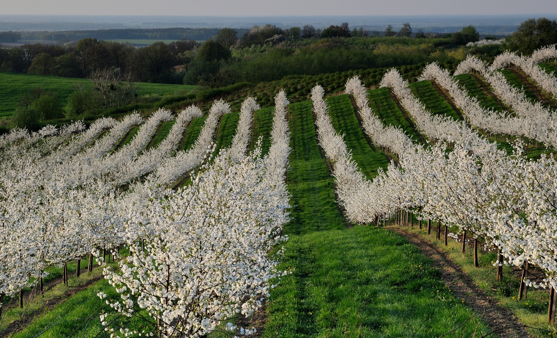 Wiosna - Plener Fotograficzny