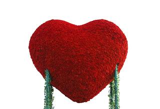 kisah Aisyah binti Abu Bakar,love