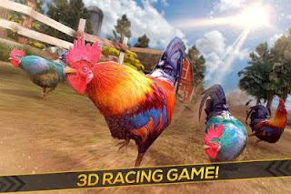 download game balap ayam apk terbaru