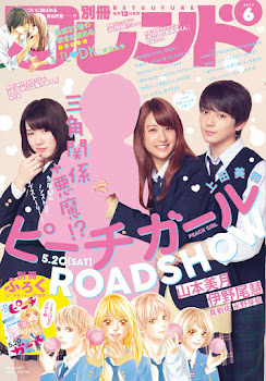 Peach Girl ~Live Action~