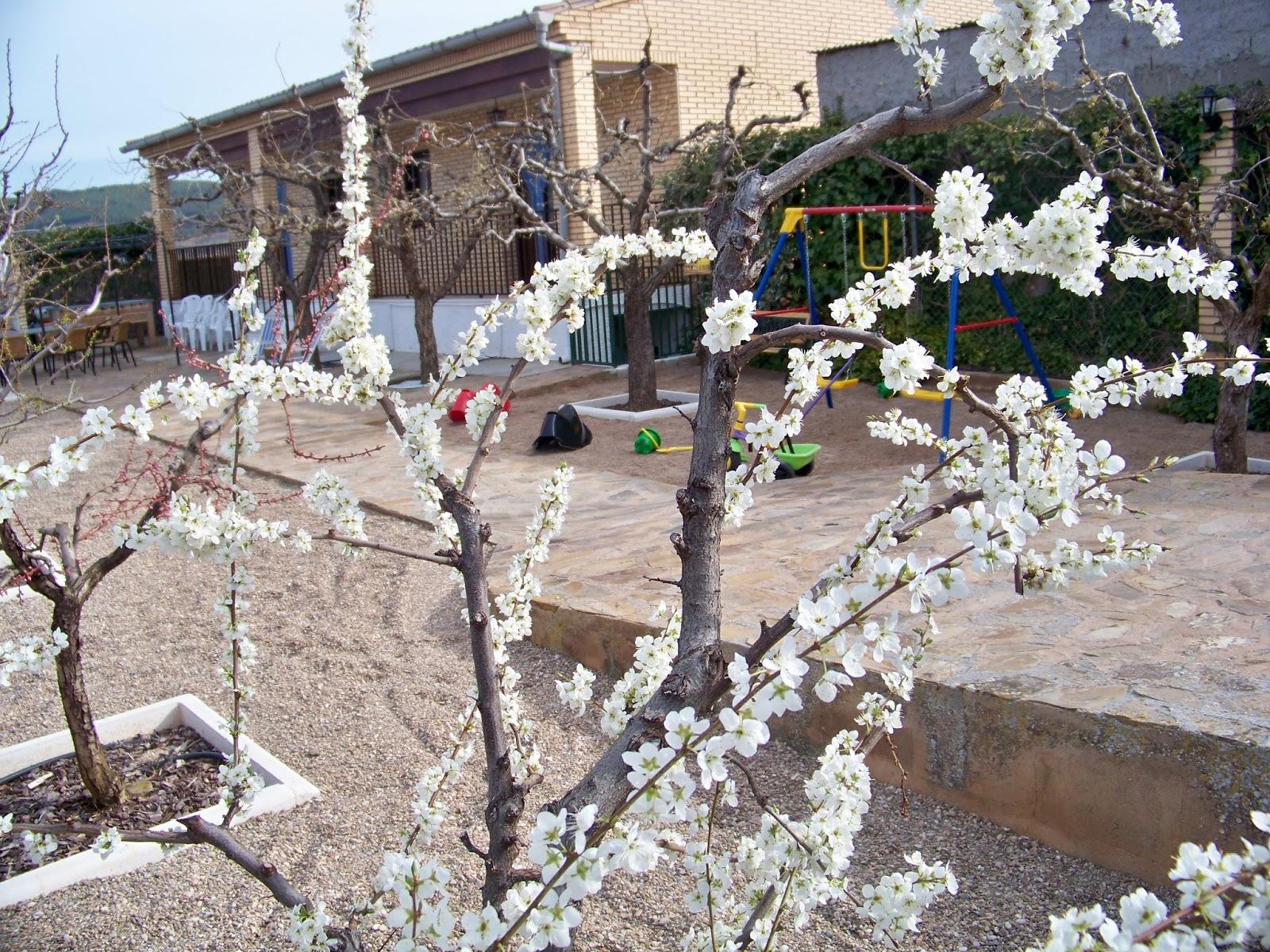 Casa rural el jardin ltima hora for Casa rural el jardin