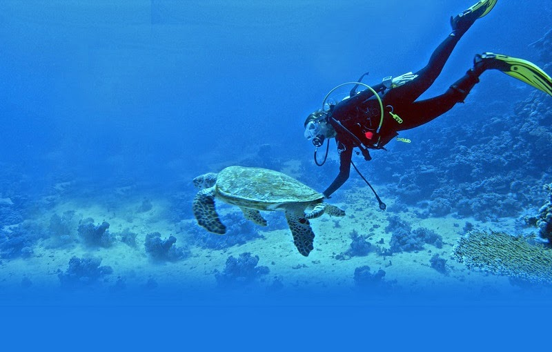 Snorkeling in Lakshadweep