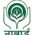 NABARD Recruitment 2017 - Manager Online Application form