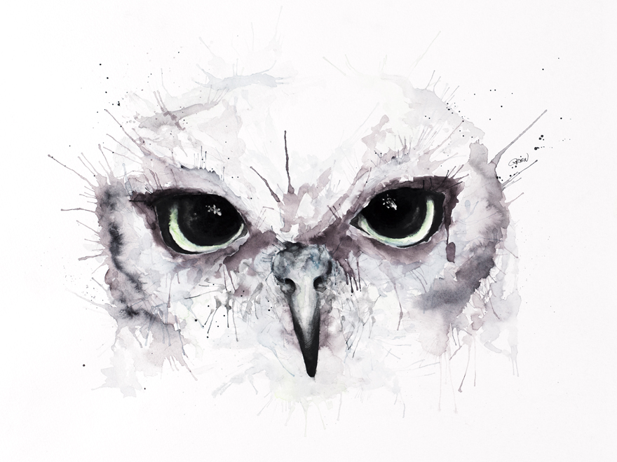 13-Owl-Philipp-Grein-Animal-Paintings-in-Splashes-of-Color-www-designstack-co