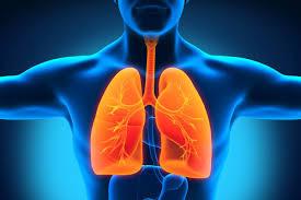 efek samping pengobatan paru paru tbc