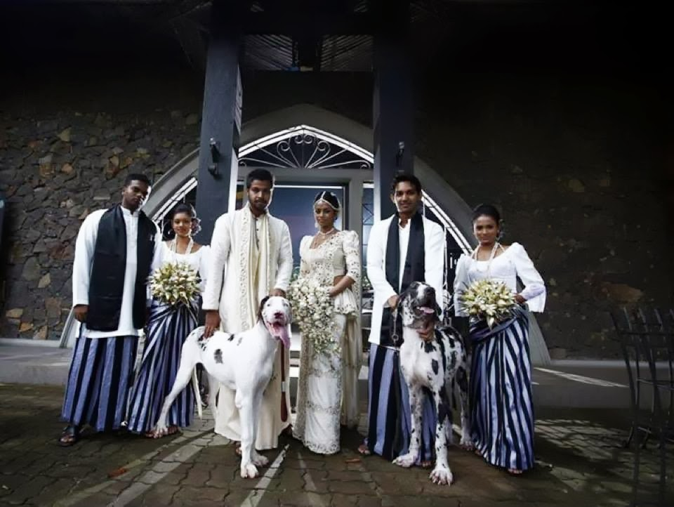 Two Big Dogs Are Used As Best Men In A Wedding