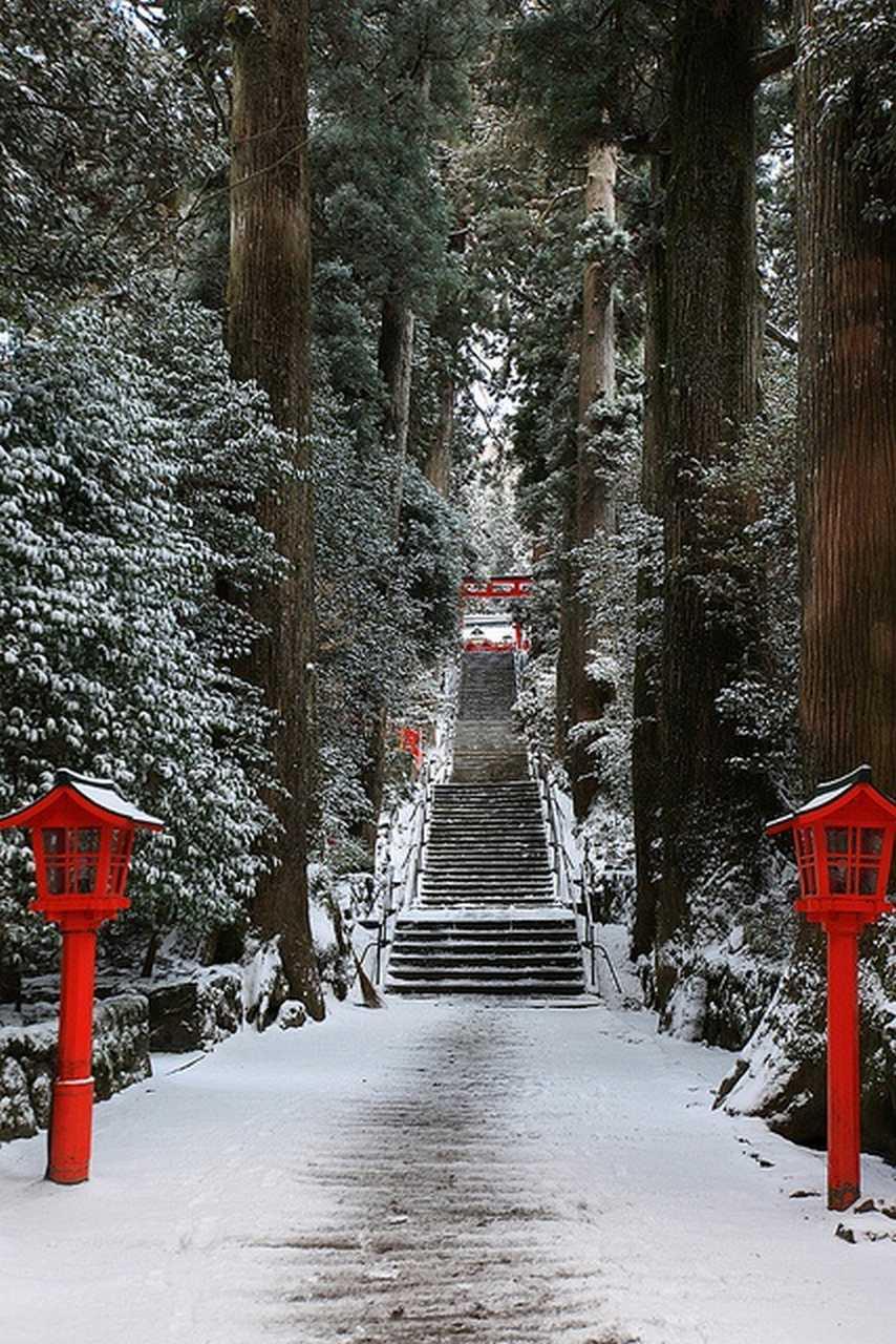 the nicest pictures hakone shrine japan. Black Bedroom Furniture Sets. Home Design Ideas