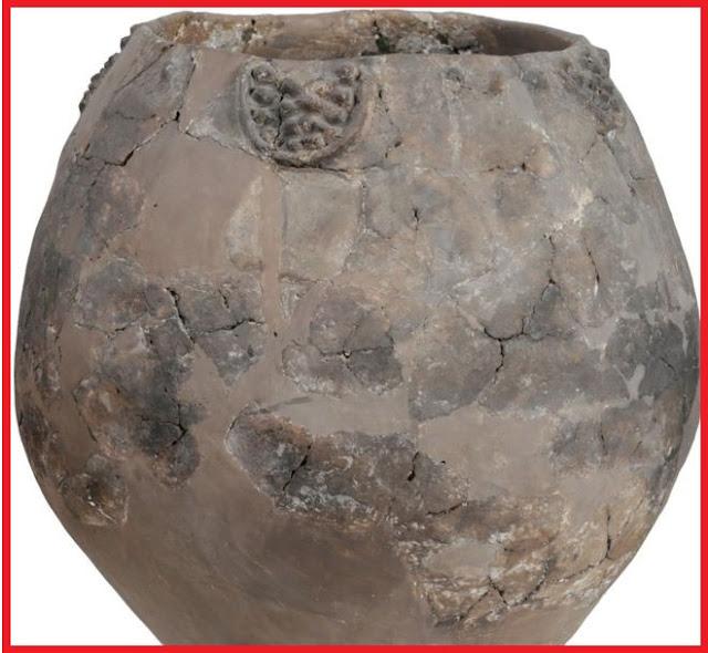 'World's oldest wine' found in 8,000-year-old jars in Georgia