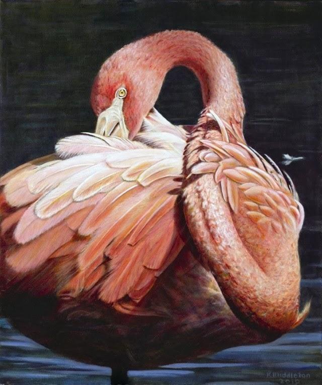 Страсть к птицам. Kim Middleton
