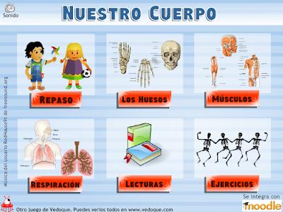 http://primerodecarlos.com/CUARTO_PRIMARIA/enero/Unidad7/actividades/naturales/huesos_vedoque.swf