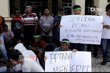 Petani dan Pengusaha Sawit Jangan Mau Lagi Dibohongi Jokowi