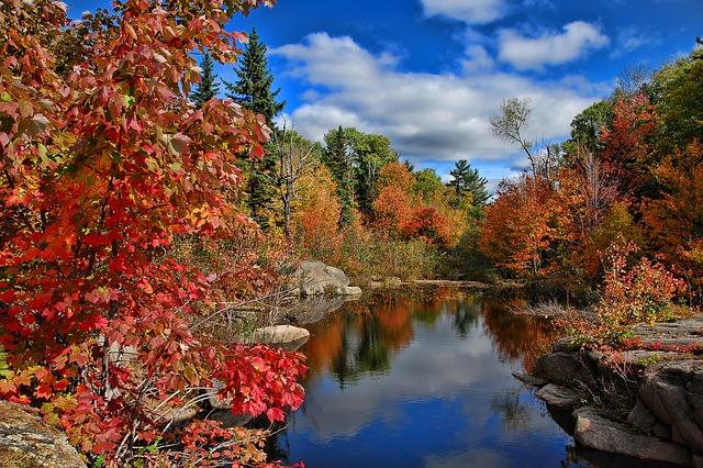 ảnh hồ nước mùa thu đẹp