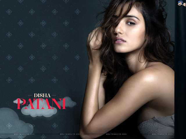 disha patani beautiful images